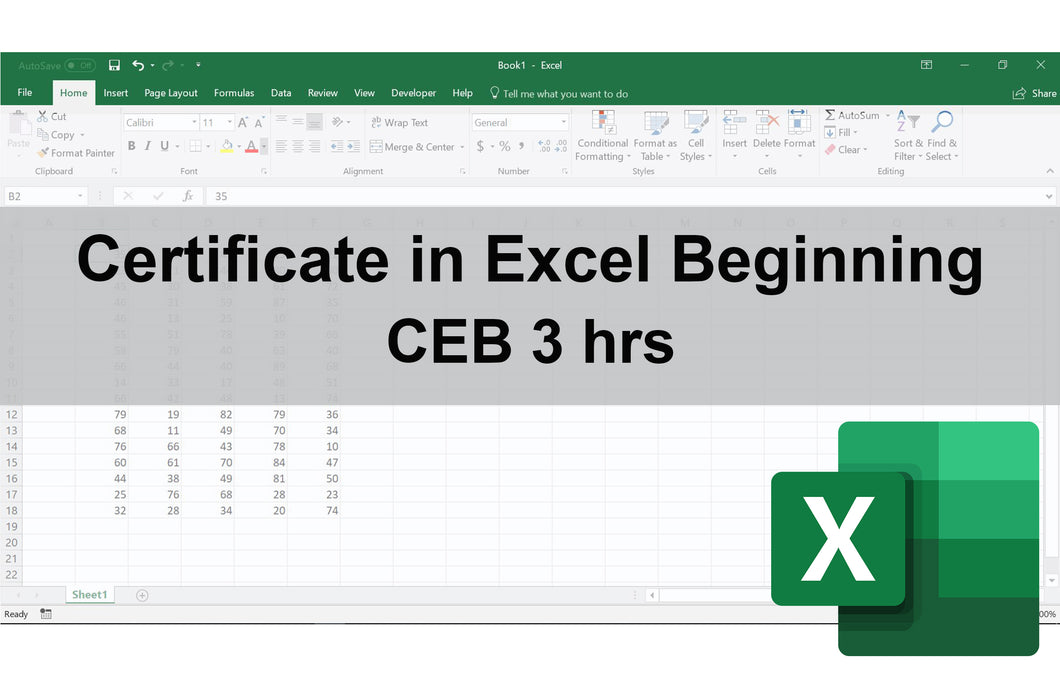 Certificate in Excel Beginning
