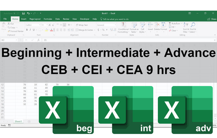 Certificate in Excel Beginning, Intermediate & Advance