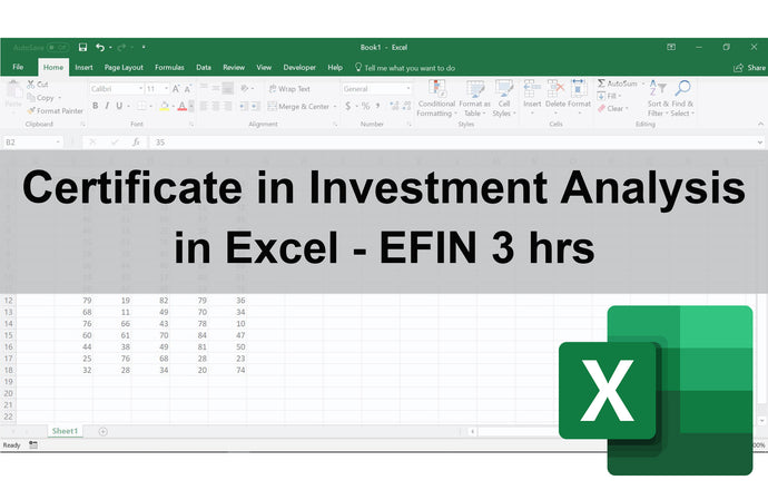 Certificate in Investment Analysis in Excel