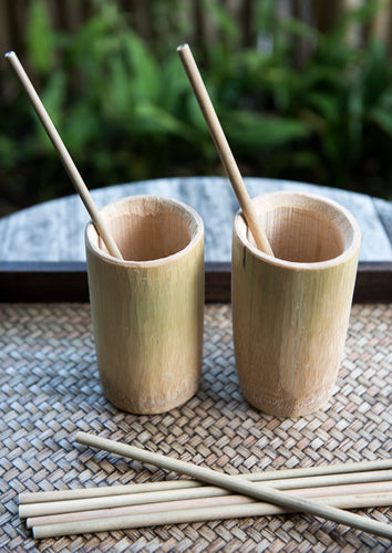 Individual bamboo straw (can only be added to pre-exisiting orders)