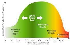What's the optimal ketone level for your ketogenic diet?