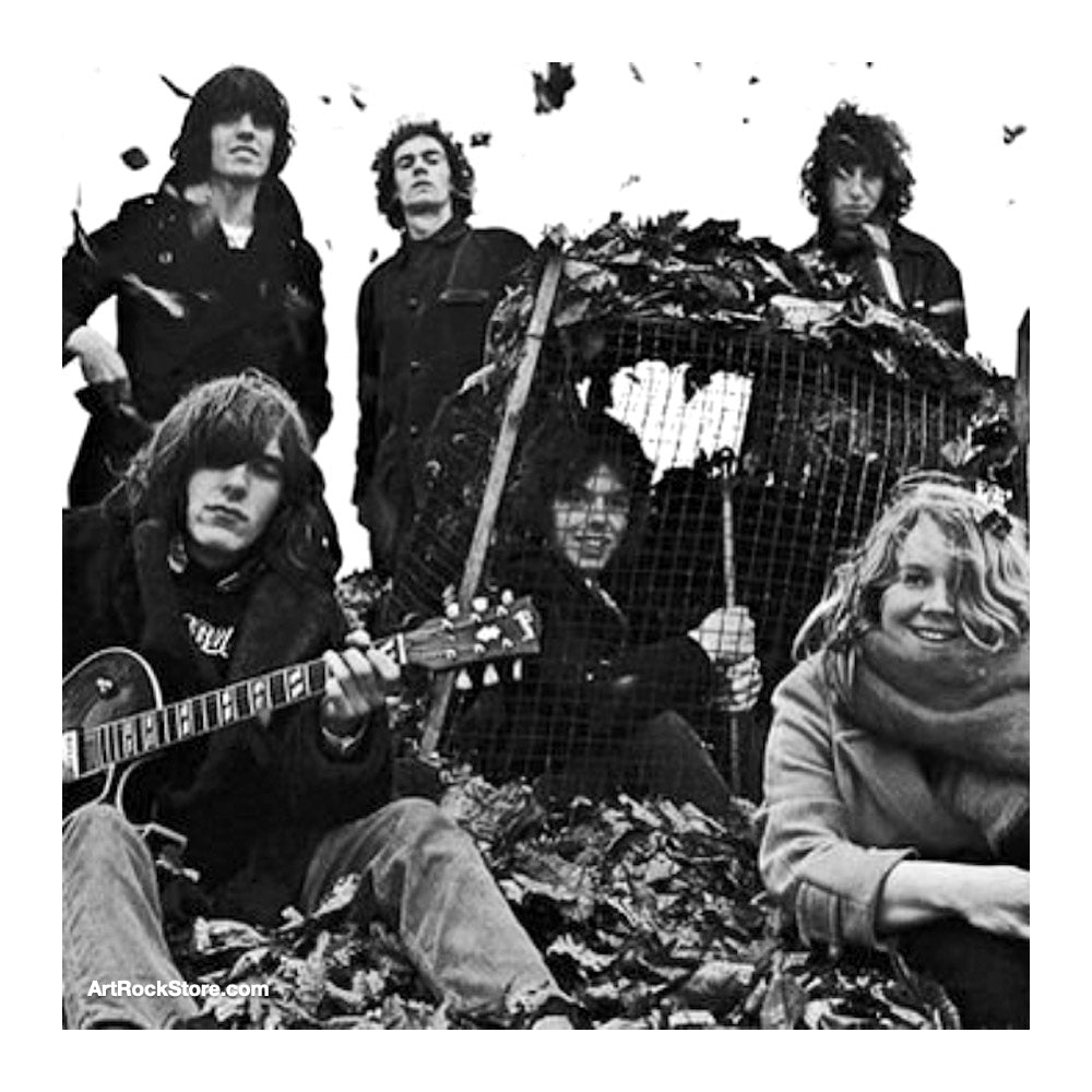 Fairport Convention |  Artist