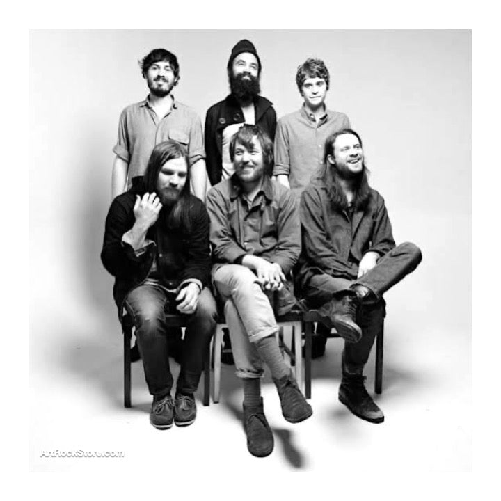 Fleet Foxes |  Artist