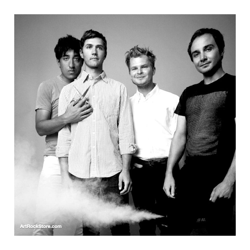 Grizzly Bear |  Artist