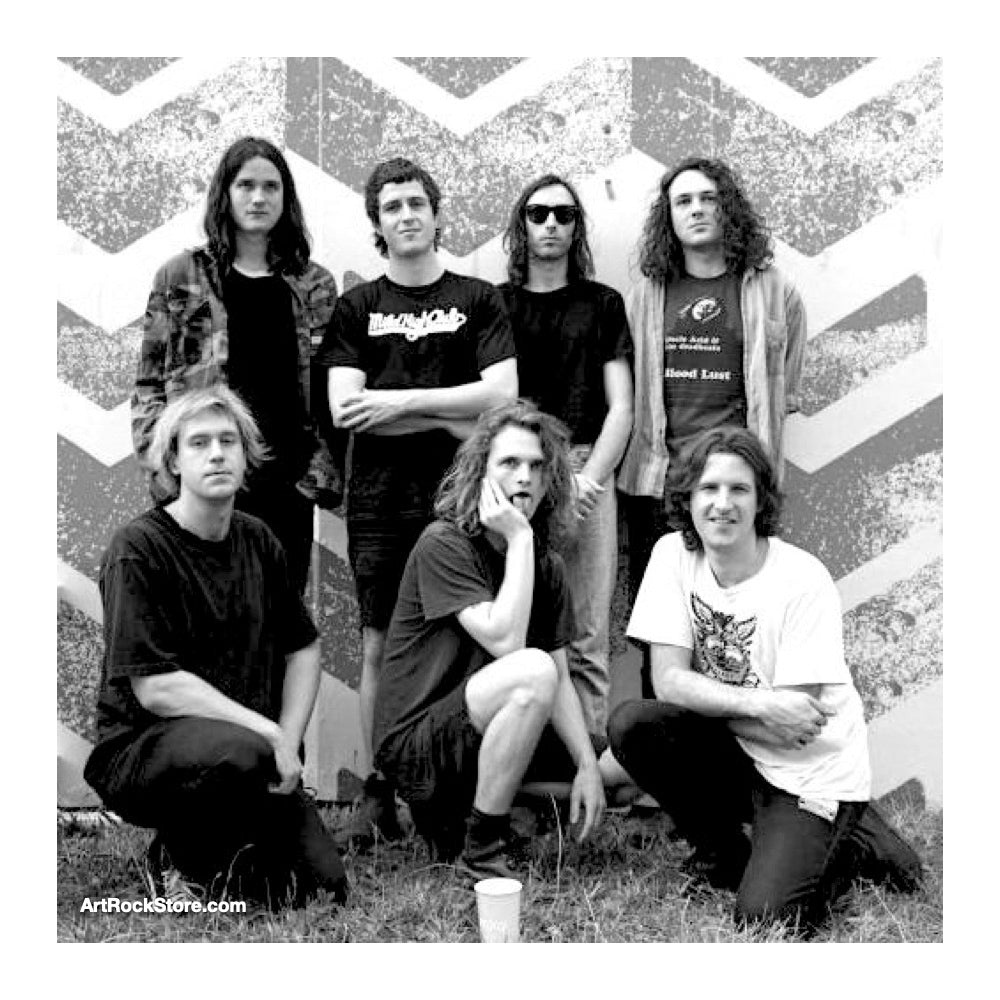 King Gizzard and the Lizard Wizard |  Artist