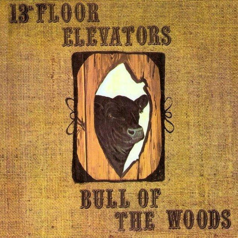 13th Floor Elevators | Bull of the Woods | Album-ArtRockStore