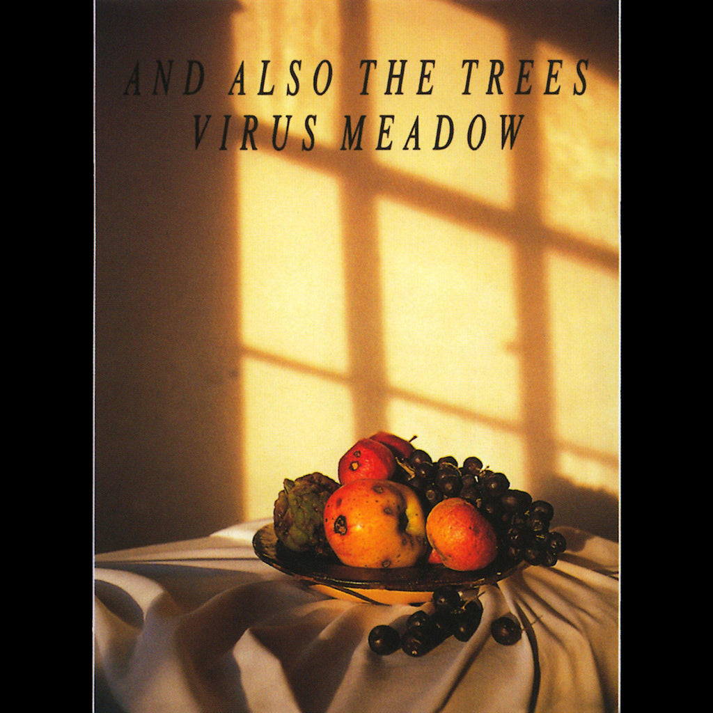 And Also The Trees | Virus Meadow | Album-ArtRockStore