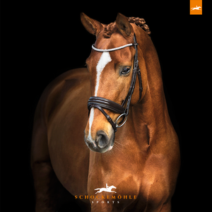 SCHOCKEMÖHLE SPORTS BRIDLE - MANHATTAN