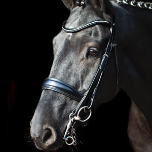 SCHOCKEMÖHLE SPORTS ANATOMIC DOUBLE BRIDLE - MILAN