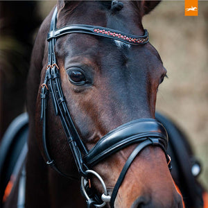 SCHOCKEMÖHLE SPORTS ANATOMIC BRIDLE - STANFORD S ROSE GOLD