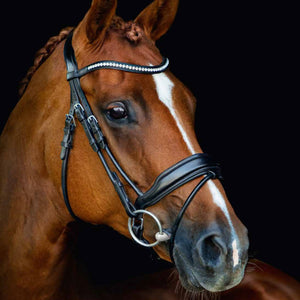 SCHOCKEMÖHLE SPORTS ANATOMIC BRIDLE - MALIBU