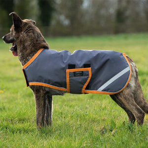 HORSEWARE IRELAND - AMIGO WATERPROOF DOG RUG