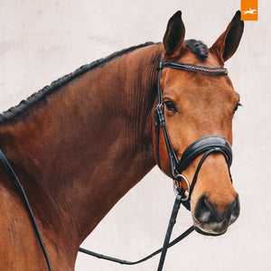 SCHOCKEMÖHLE SPORTS ANATOMIC BRIDLE - STANFORD S