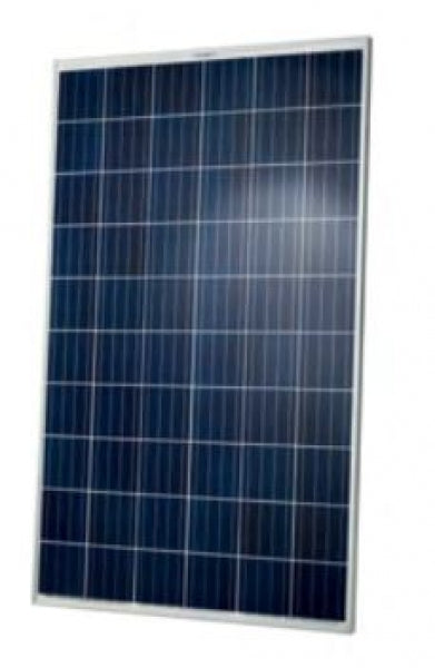 Q-Cells  Q.PLUS-G4.1 280 280Wp Solarmodul