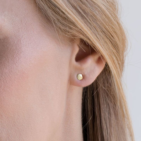 14k Solid Gold Shell Stud Earrings With Gold Closures