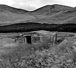 MOURNE SHEEP SHELTER         Photographic Print                      Alain Le Garsmeur