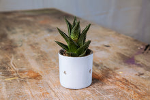 MOURNE CERAMIC MINI POT  by Rebecca Killen