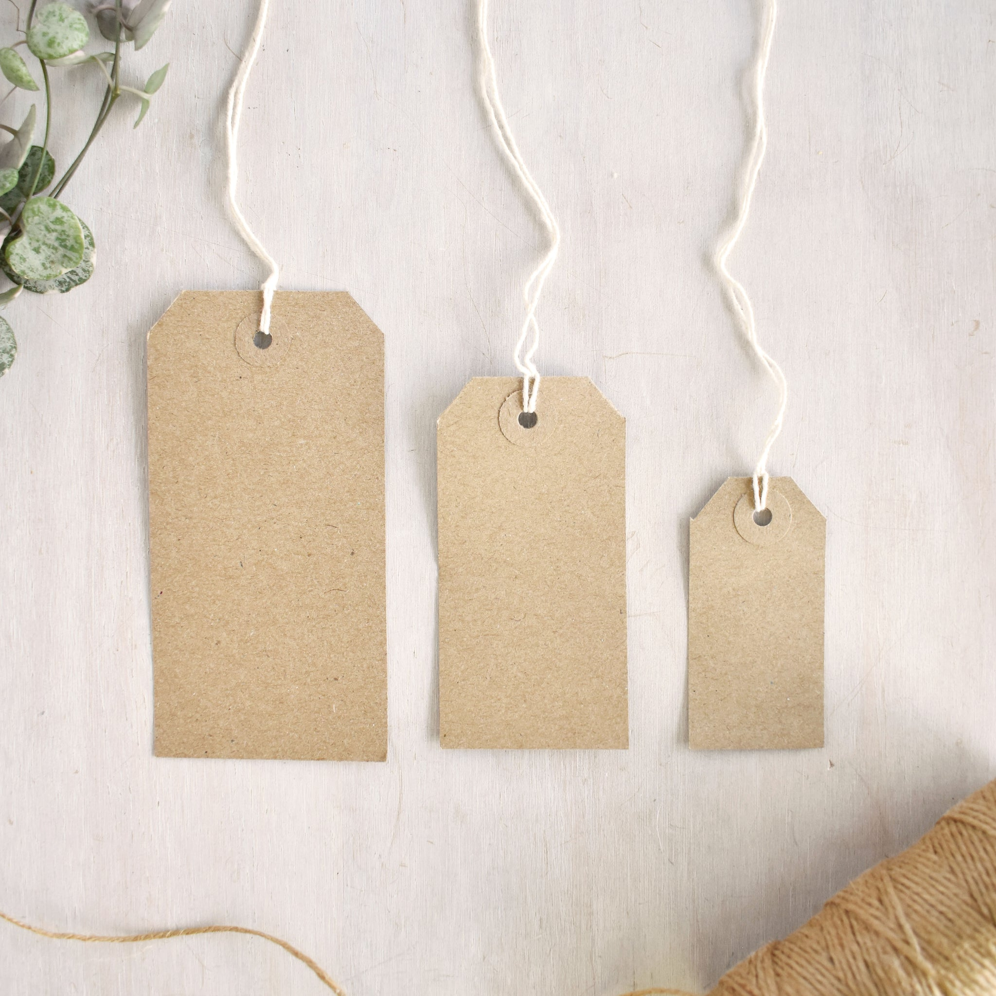 Brown Kraft Luggage Tags (3 sizes)