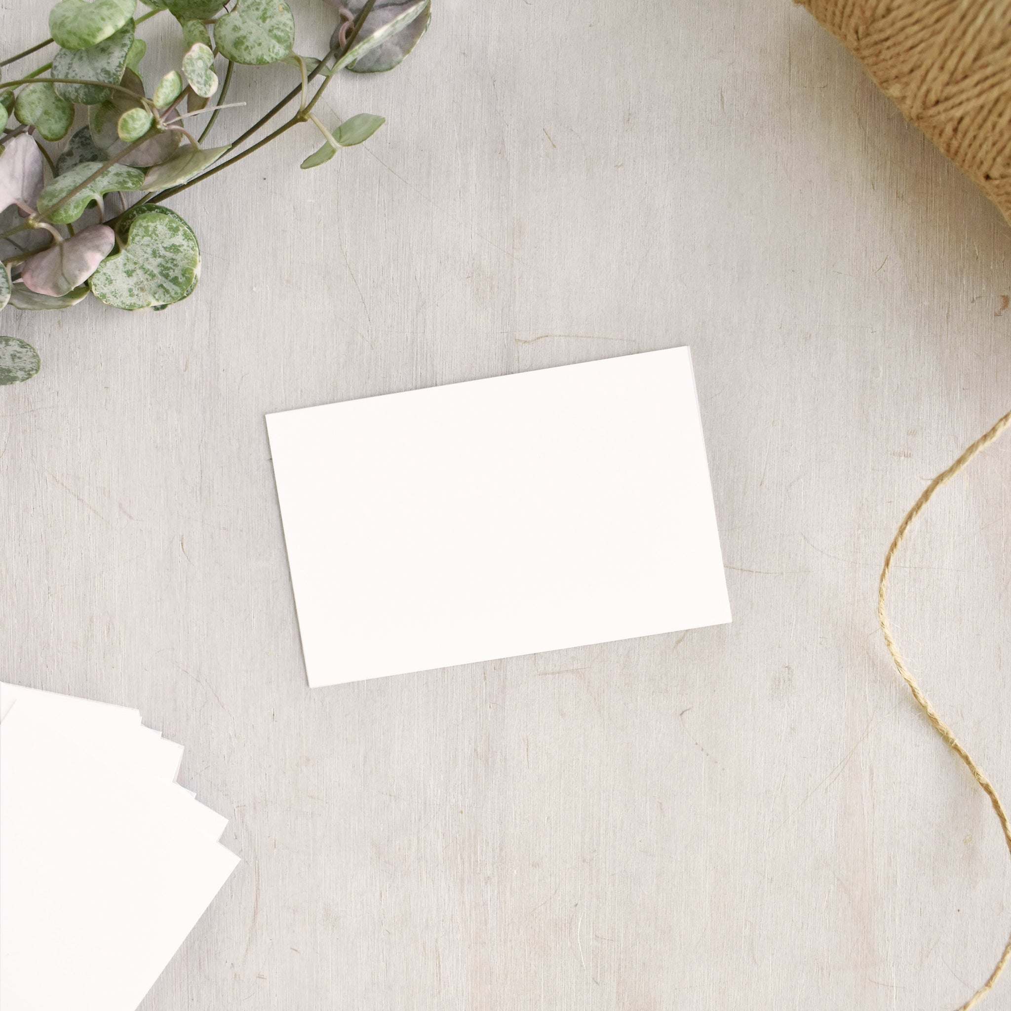 Blank White Business Cards 85 x 55mm
