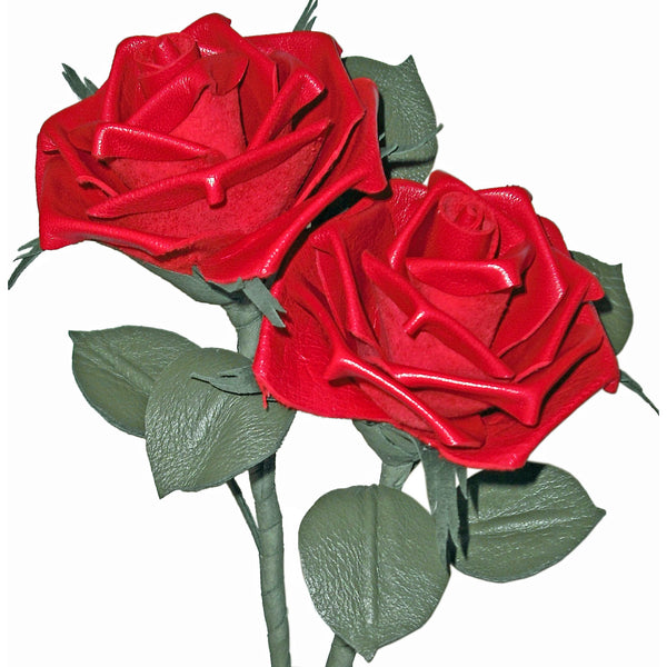 Pair of red leather roses on a white background