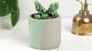 Concrete plant pot