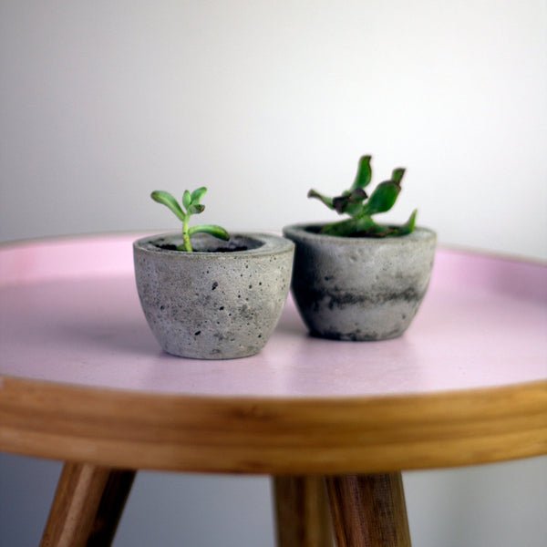 Set of Two Concrete Planter