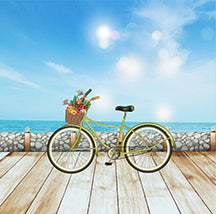 Boardwalk bike