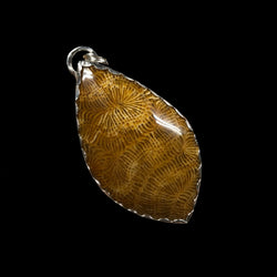 Milly - Fossil Coral and Sterling Silver Necklace
