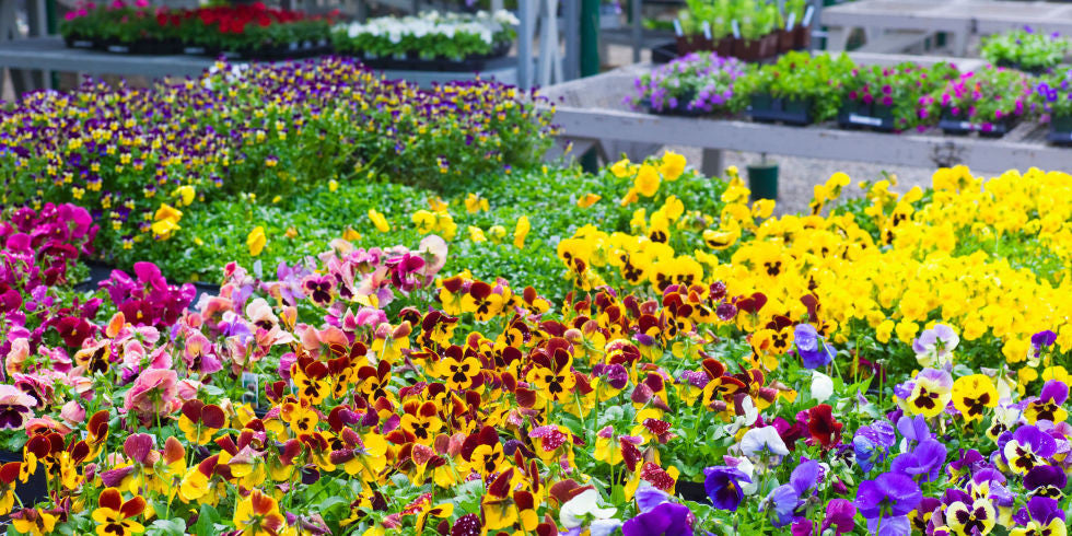 9 Gardening Trends That Are Going to Be Taking Over Flower Beds In 2017