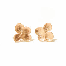 Load image into Gallery viewer, Hydrangea Studs 14k