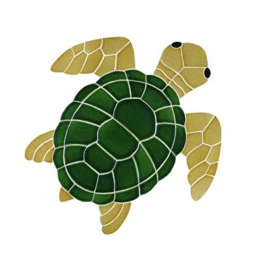 Classic Turtle Topview Natural-Medium