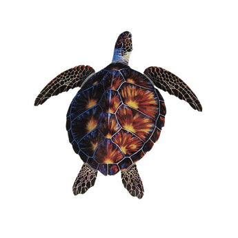 Brown Porc Turtle -18