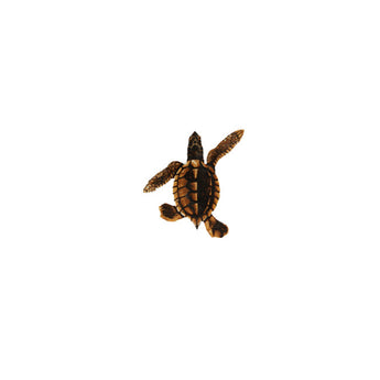 Baby Turtle-B Brown Porc-5