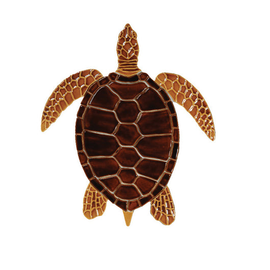 Brown Sea Turtle - 18