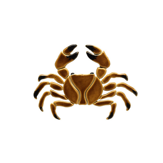 Brown Crab 7