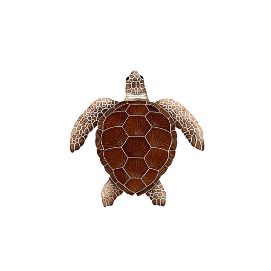 Loggerhead Brown Turtle Small