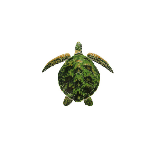 Green Porc Turtle -10