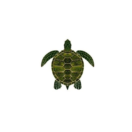 Sea Turtle - Green 10
