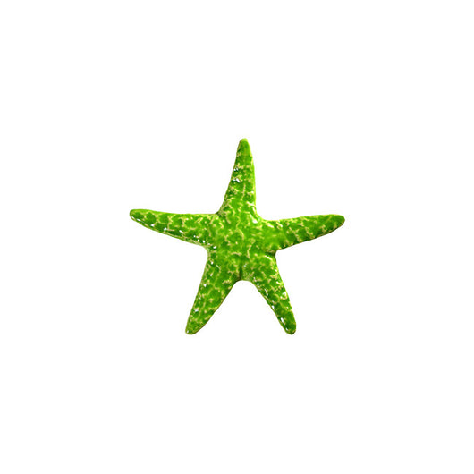 Starfish Lime 5