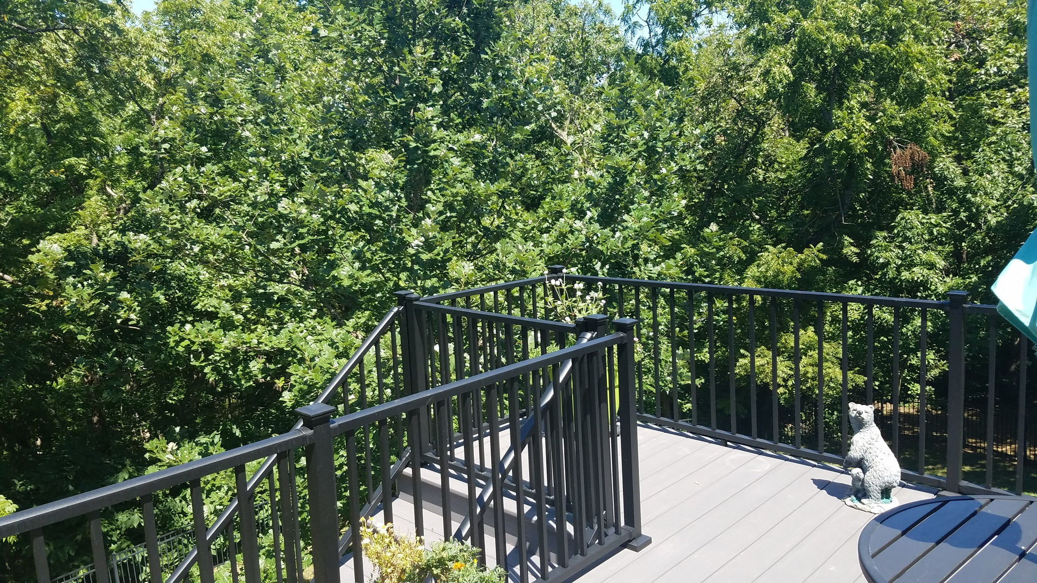 Deck Railing Systems, What Do They Cost?