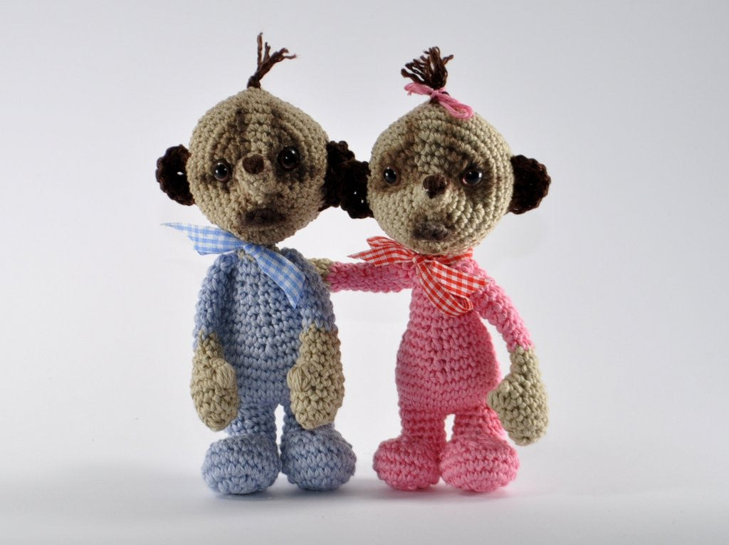 Kalli and Katie Amigurumi Crochet Pattern - lucygurumi - product picture