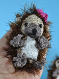 Hedgehog Jolanthe and Jonas - amigurumi crochet Pattern - lucygurumi - product picture