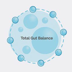 BIOHM <b>maintains</b> total gut <b>balance</b> of bacteria & fungi