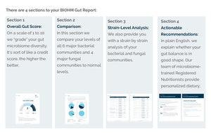 the 4 sections of the BIOHM Health Gut Report