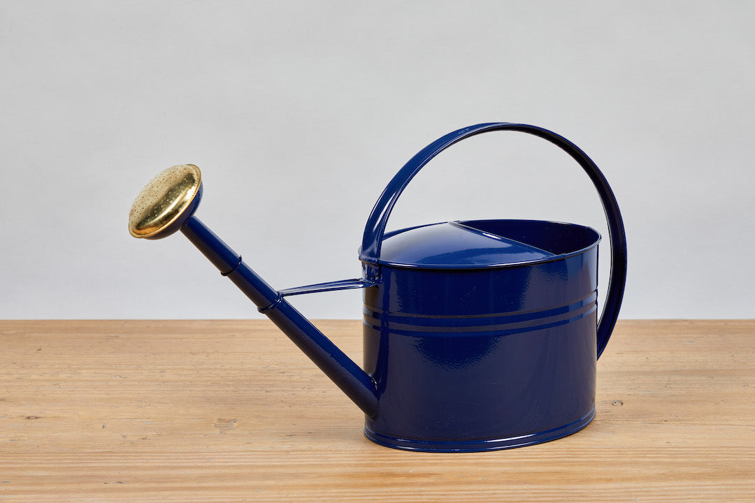 Watering Can, Navy Blue
