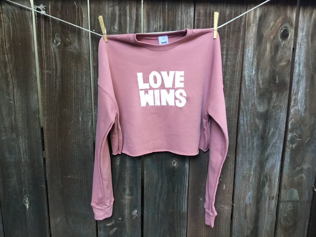 Women's LOVE WINS Cropped Hoodie