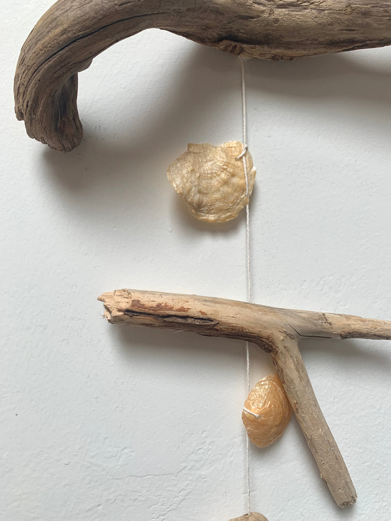 Driftwood & Shells Wall Hanging