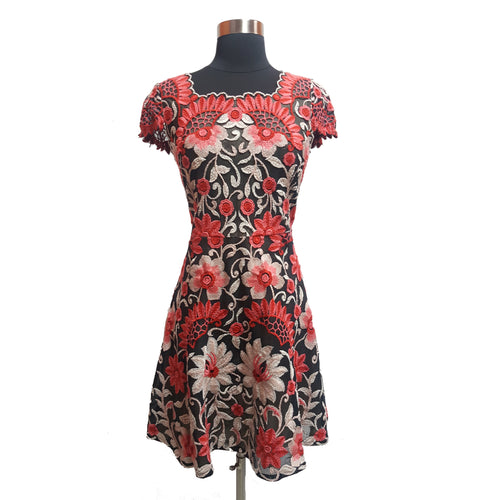 Baraschi Embroidered Overlay Dress