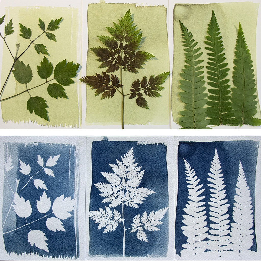 DIY Sólmyndasett / DIY Cyanotype Kit