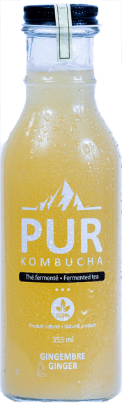 PUR KOMBUCHA GINGER 355ML